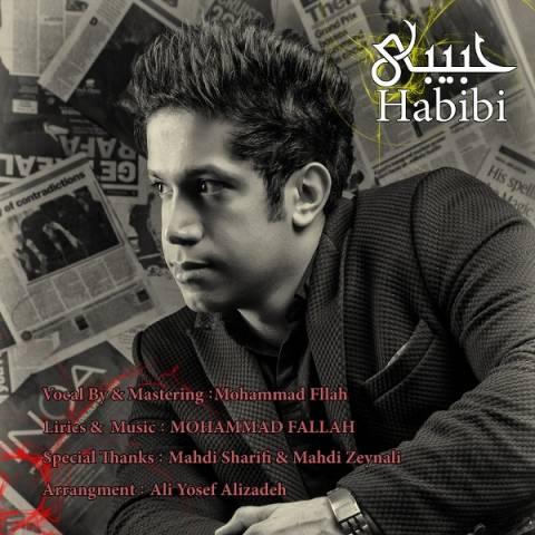 دانلود آهنگ محمد فلاح به نام حبیبی