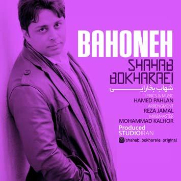 shahabbokharaie